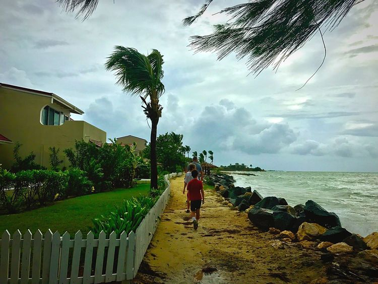 Hurricane Irma 2017 EyeEmNewHere EyeEm Gallery Eyeembeachlover EyeEmCaribbean Travel Destinations Cloud - Sky Sky Tree Full Length Real People Sea Water Nature Outdoors Beauty In Nature Leisure Activity Day One Person Palm Tree Lifestyles Built Structure Scenics Architecture JeanneRotaMatthews