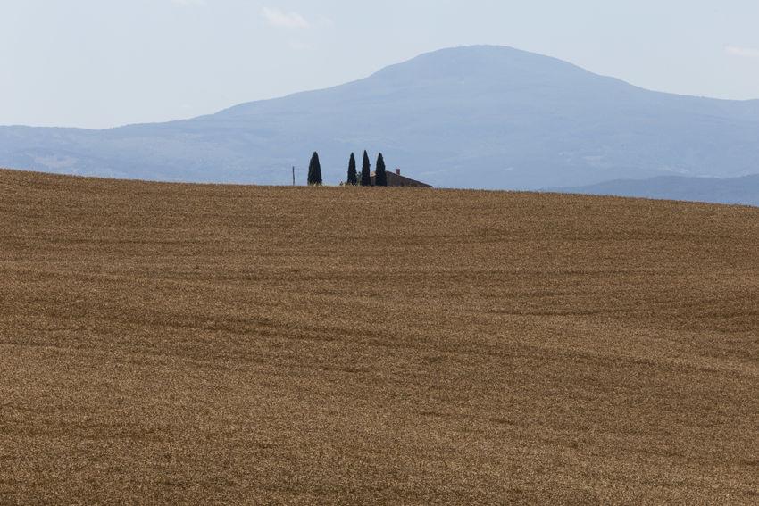 Val D Orcia Crete Senesi Pienza Toscana Landscape Orcia Siena Summer Valdorcia