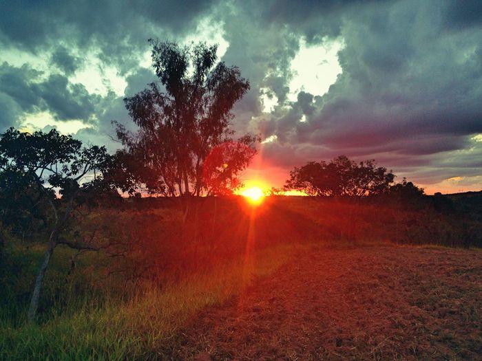 Por do sol direto da chácara! Beleza de Deus estampada na natureza! First Eyeem Photo
