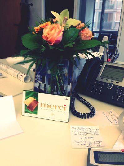 Flower Office Phone Büro Flower Indoors  Table Desk Paper Close-up Day Freshness