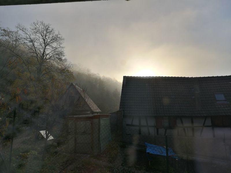 Brouillard du matin... No People Outdoors Automne 2017 Automne🍁🍂🍃 Autumn 2017 Brouillard Du Matin Brouillard Matinal Brouillard Foggy Morning Fog Sunrise Lever De Soleil HUAWEI Photo Award: After Dark