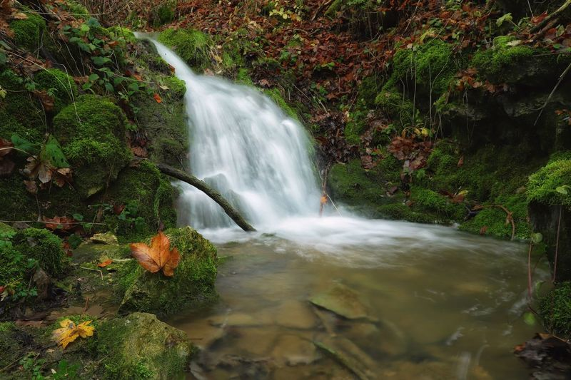 """Autumn Landscape"" Waterfall Motion Water Long Exposure Nature Beauty In Nature Blurred Motion No People Scenics Plant Leaf Growth Outdoors Forest Day Freshness Tree Autumn Autumn Leaves Https://www.facebook.com/mh.photography.de/ Michael Hruschka Wasserfall Herbst Langzeitbelichtung Landscape"
