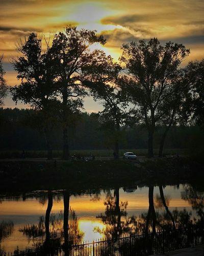 Edirne sabahından günaydın 😄👋 Morning Edirne Meriç Tree Sun Sky Cloud Contrast Canon EOS 700D