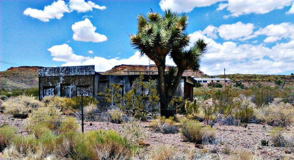 Arizona Abandoned Places Along The Way Deserts Around The World Joshua Tree Space And Place Desert Sky My Commute Desert Imperfection Is Beauty Desert Life