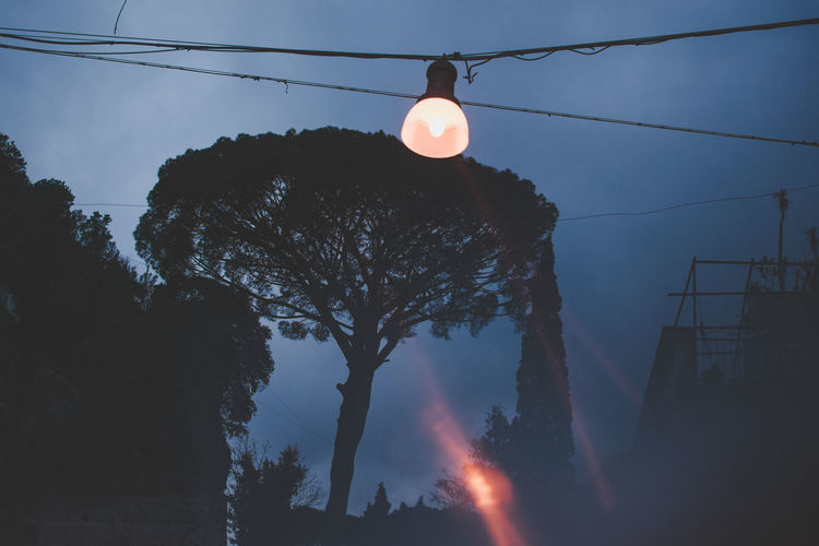 Street Light Cable Connection Dusk Electricity  Illuminated Lens Flare Lighting Equipment Low Angle View Nature No People Outdoors Plant Power Line  Power Supply Silhouette Sky Technology Tree
