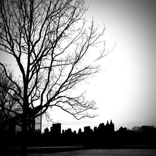 Basebol 17.62° Hopes And Dreams Dreaming Love To Take Photos ❤ Nubes #clouds Sky And Clouds Nice Atmosphere Nice Views Just Around Home My Best Photo CancerSucks Relaxing Time Meditation Place Dreamcatcher Méméritage Women Who Inspire You MISSING U International Women's Day 2019 Mom Lordofcaos SexyGirl.♥ Sexual, Dark, Semi-nude, Profile, Sensual Moms & Dads NYC Photography NYC NYC Street Photography NYC LIFE ♥ Softporn Sexywomen Dreamlovers Despertando VistaLinda Mañanasdefotografías Ventana Con Vistas Tree Bird Ink Silhouette City Branch Sky Riverbank Tranquil Scene Shore Scenics Calm Non-urban Scene Leopard Streetwise Photography