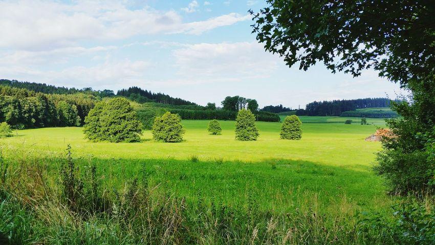 Germany Landscape Peace Workaway Deutschland