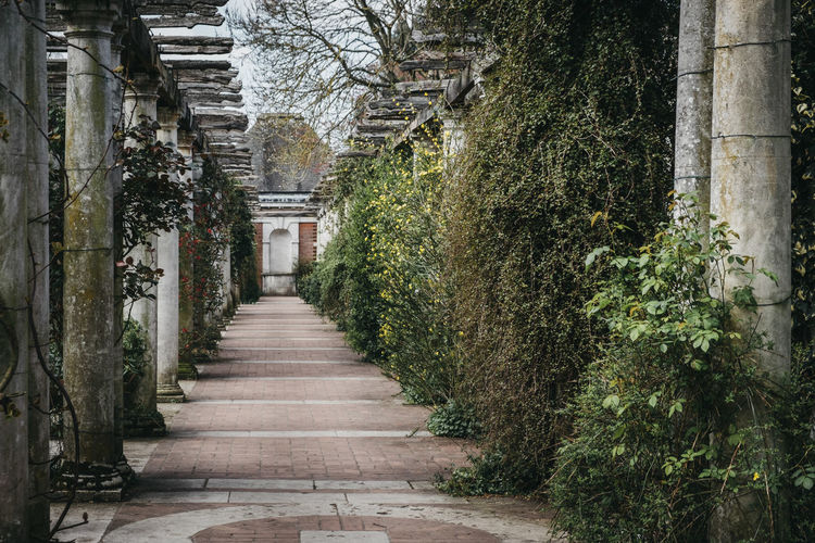 The hill garden and pergola in golders green, london, uk.