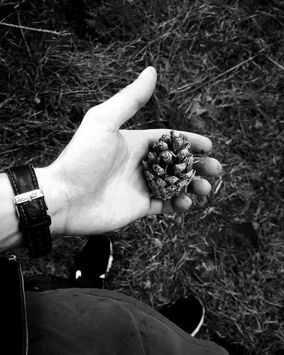 """grasp nature"" Human Body Part Human Hand One Person High Angle View People Close-up Outdoors Nature Portrait Photography Themes Abstract Photography White Background Photography Blackandwhiteworld Film Industry Camera - Photographic Equipment Blackandwhitephoto Black Color Beauty In Nature"