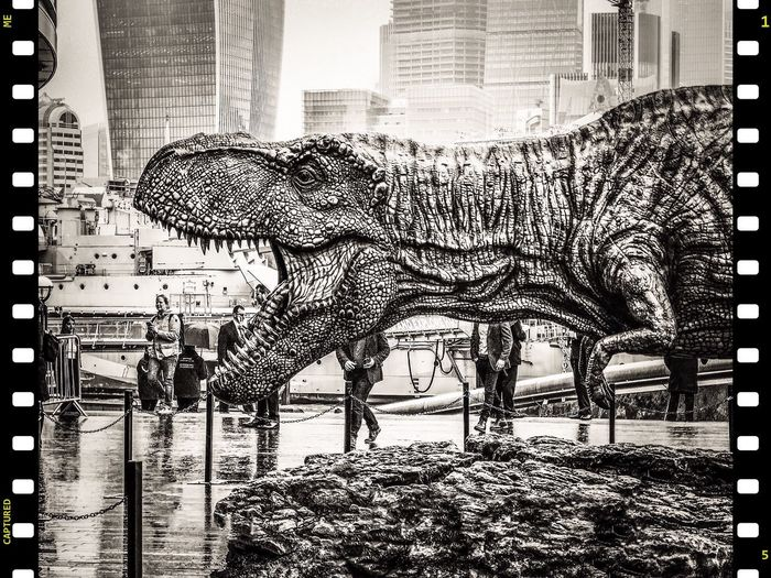 Rrrroar-ing! A premiere in London Mobile Photography Film TRex  P20 Pro Huawei P20 Pro Black And White Dinosaur Travel Photography Street Photography Leica Lens Bnw Phoneography Dinosaur Roar Premiere Film Day Pattern Close-up City Leisure Activity