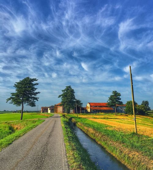 Sky Plant Cloud - Sky Tree Nature Road Field The Way Forward No People Beauty In Nature Transportation Direction Landscape Growth Outdoors Diminishing Perspective Agriculture Rural Scene Scenics - Nature Land