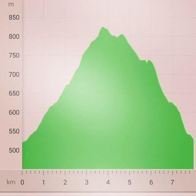 morning run Höhenprofil Draußenzuhause @medletik_ Medletik Medletiklaufteam crosstraining instafit sport thüringerwald thüringen thuringia germany uphill