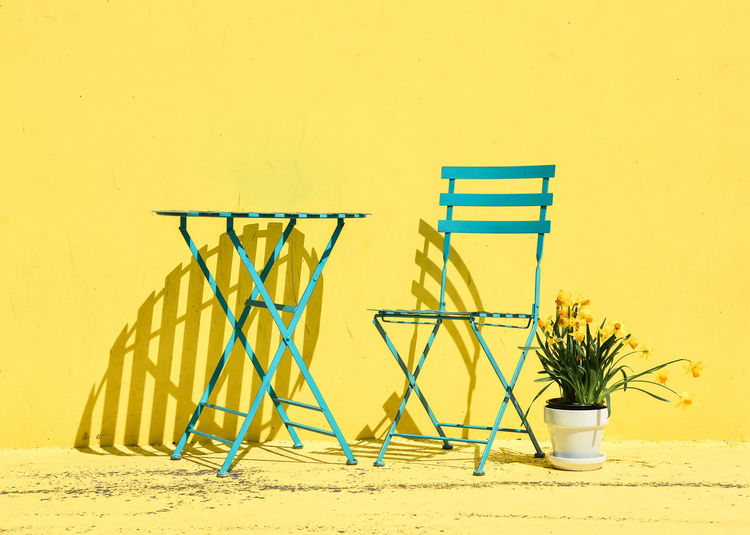 Potted plant with chairs and table against yellow wall