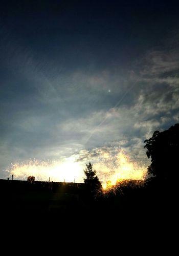 Nightsky Taking Photos sunset Relaxing