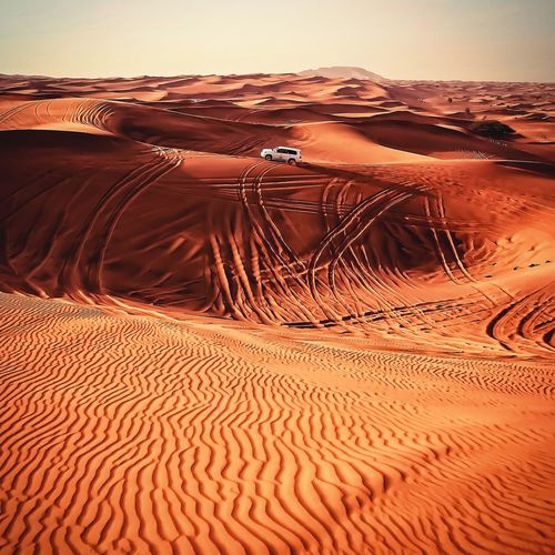 The Great Outdoors - 2017 EyeEm Awards Mars safari anyone? Desert Sand Dune Sand Arid Climate Landscape Nature Scenics Outdoors Tranquil Scene No People Beauty In Nature Pattern Day Clear Sky Sky