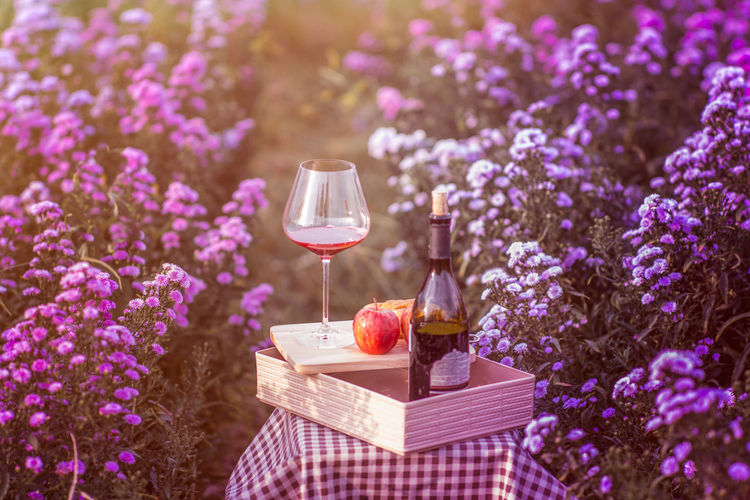 Beauty In Nature Bottle Box - Container Close-up Container Drink Field Flower Flowering Plant Food And Drink Fragility Freshness Glass Land Lavender Lilac Nature No People Outdoors Plant Purple Refreshment Springtime Summer Vulnerability