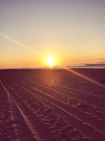 Morning sunshine 🌞 First Eyeem Photo