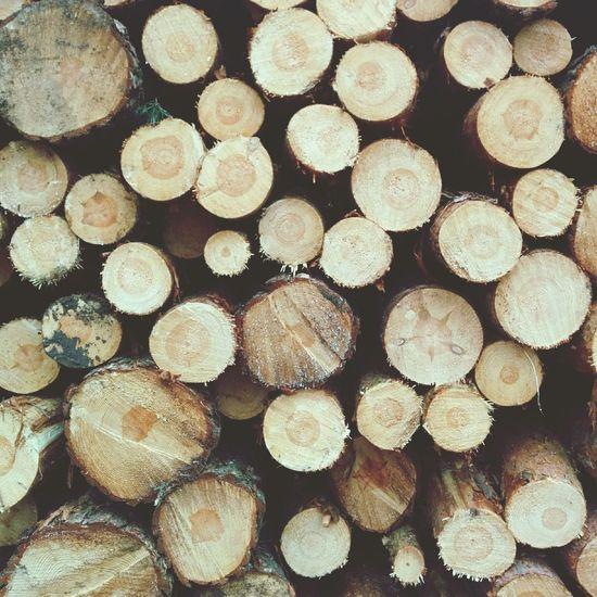 A lot of wood
