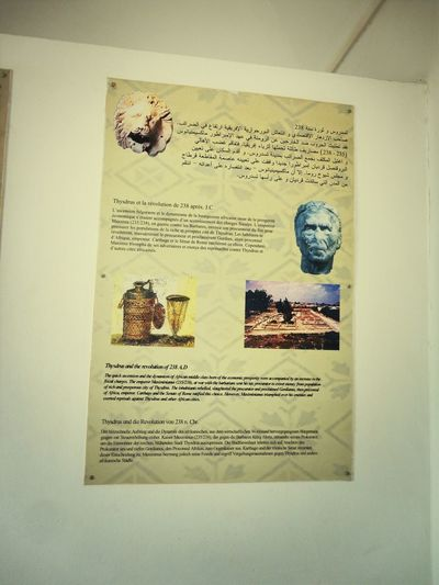 musée Eljem A7kili Carthagene