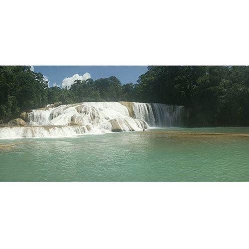 Waterfall Nature Chiapas Aguazulchiapas Visitmexico Viveloparacreerlo Travel_learn_explore_the_world 🇲🇽 🇽Pasionxmexico ViveMexico Vive_mexico