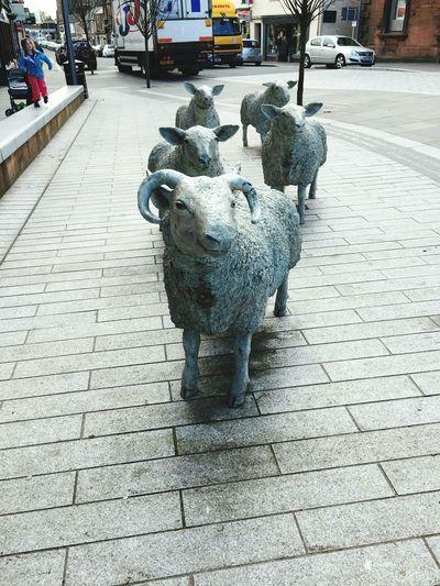 Sheep Art Sculpture