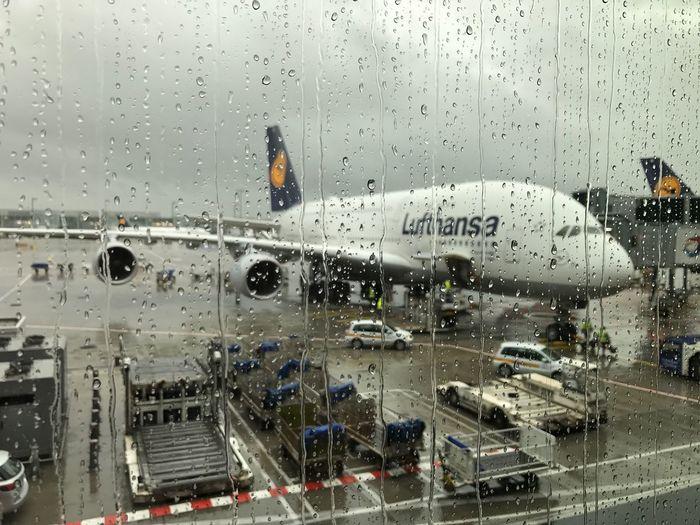 A380 Lufhtansa