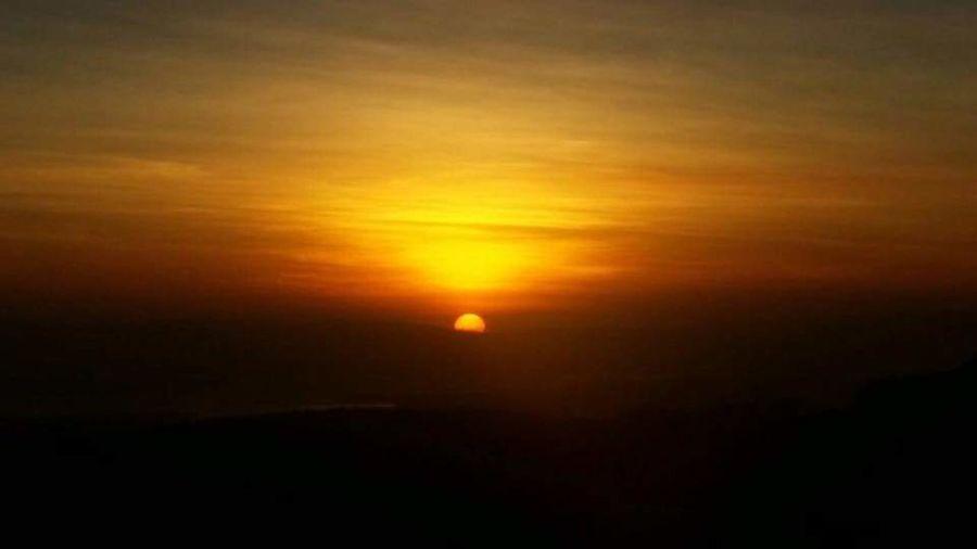 Tranquility Sun Orange Color