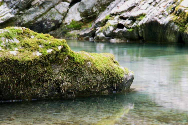 Rock - Object Nature Water River No People Beauty In Nature Moss Tranquility Waterfront Outdoors Scenics Idyllic Outdoors Photograpghy  Freshness Landscape Stream - Flowing Water Austria Carinthia Iloveit Power In Nature Beauty In Nature Nature Motion Rock Formation Blurred Motion 👌 nice pic EyeEmNewHere EyeEmNewHere