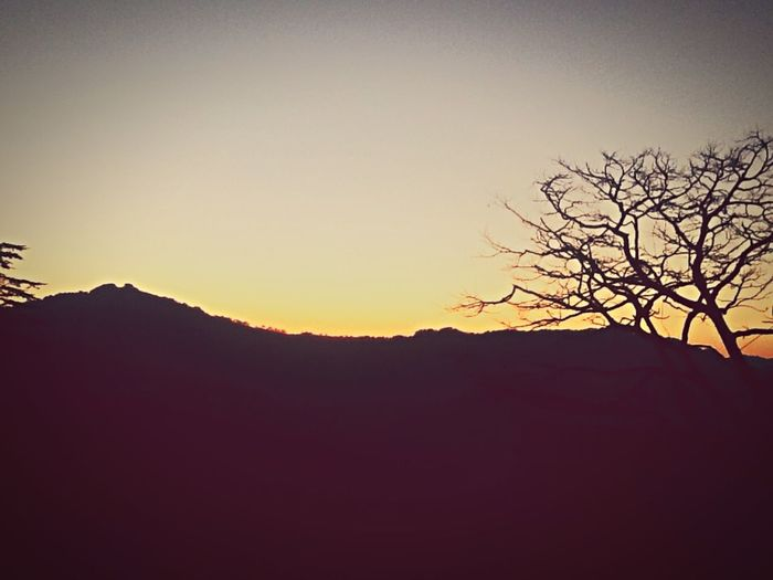 Silhouette Nature Sunset Beauty In Nature Tranquility Copy Space Scenics First Eyeem Photo