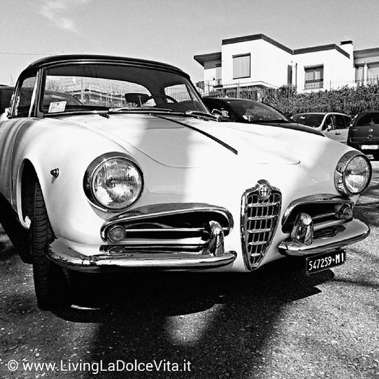 Alfa Romeo Giulietta Spider 1955 (I guess) LivingLaDolceVita (foto from 14/4/2013)