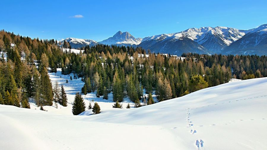Scenic view of snow covered field and mountains against blue sky