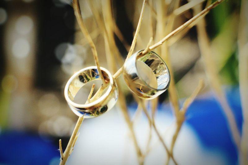 Depth Of Field Weddingrings EyeEmBestPics