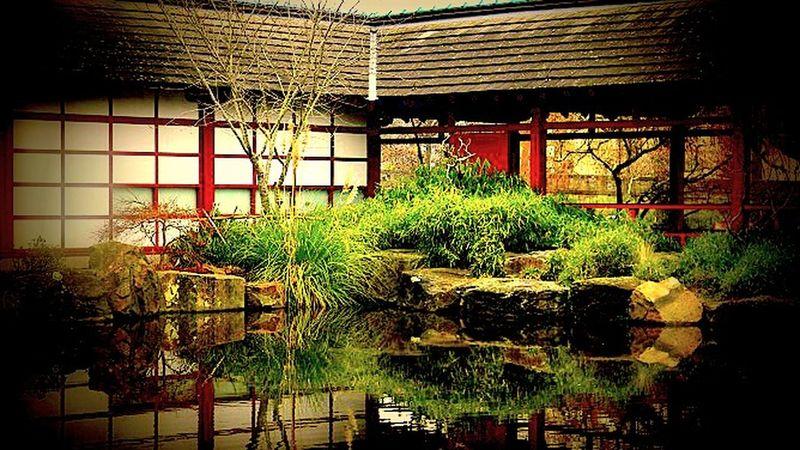 Colours Of The Orient Zen Oriental Taking Photos