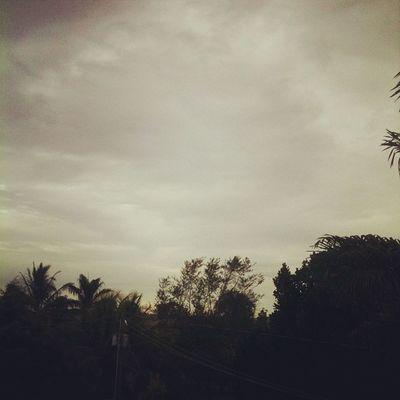 Farm Cloudy Nosignal