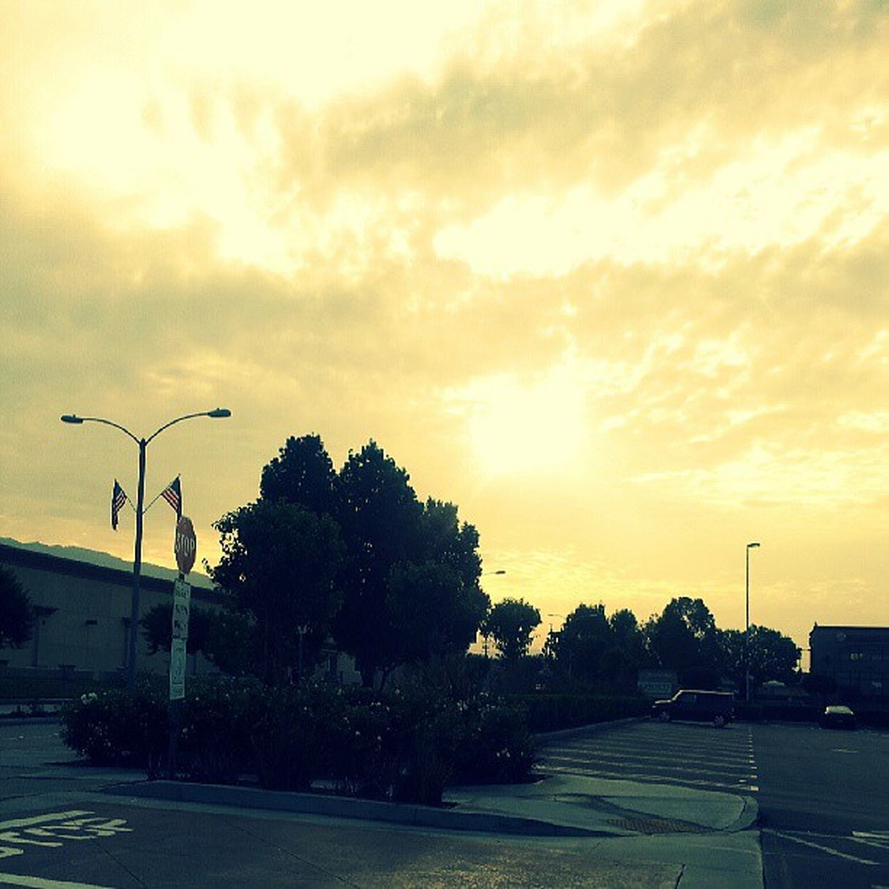 tree, sky, sunset, cloud - sky, transportation, road, car, street light, outdoors, no people, nature, day, beauty in nature