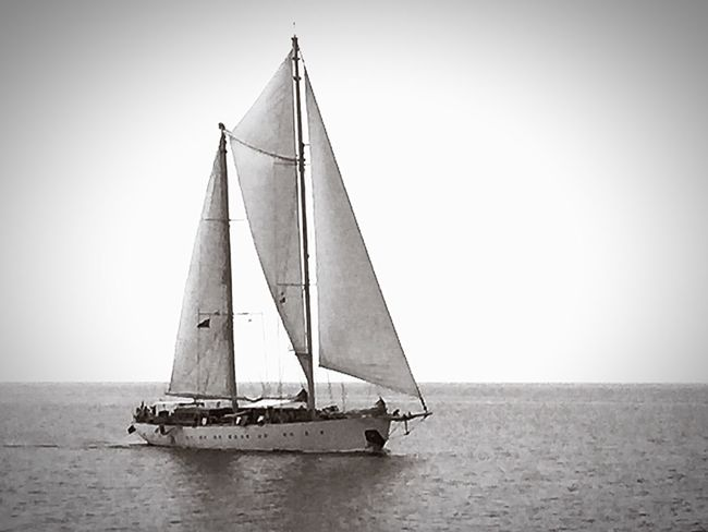 Sea Nautical Vessel Sailboat Water Transportation Sailing Horizon Over Water Nature Outdoors Sky Day No People Yachting