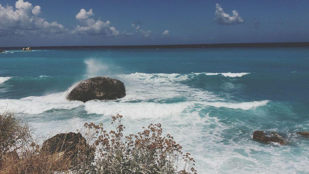 Sea Sea Life Water Wildbeauty Blue Waves Sky Naturephotography