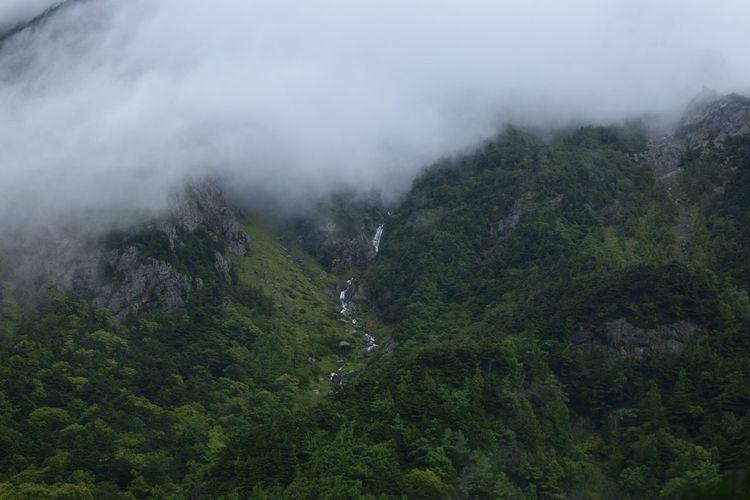 上高地 雨 幻の滝 Tranquil Scene Tranquility Mountain Beauty In Nature Landscape EyeEm Nature Lover Rainy Days Nature Photography EyeEm Best Shots - Nature EyeEm Best Shots