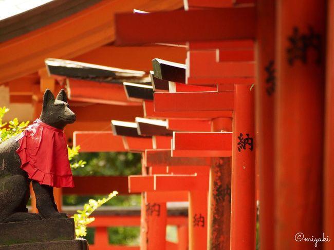 根津神社。The Nezu Shrine. Shrine Red EyeEm Best Shots