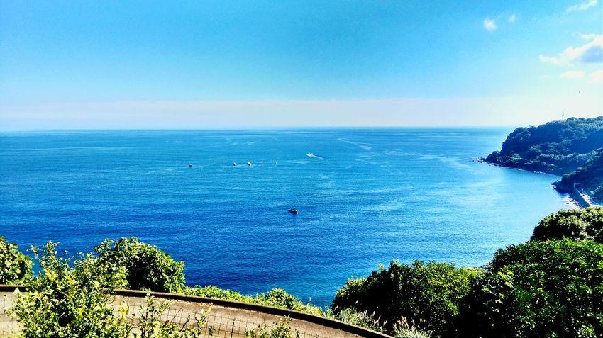 小田原市江之浦 Sea And Sky