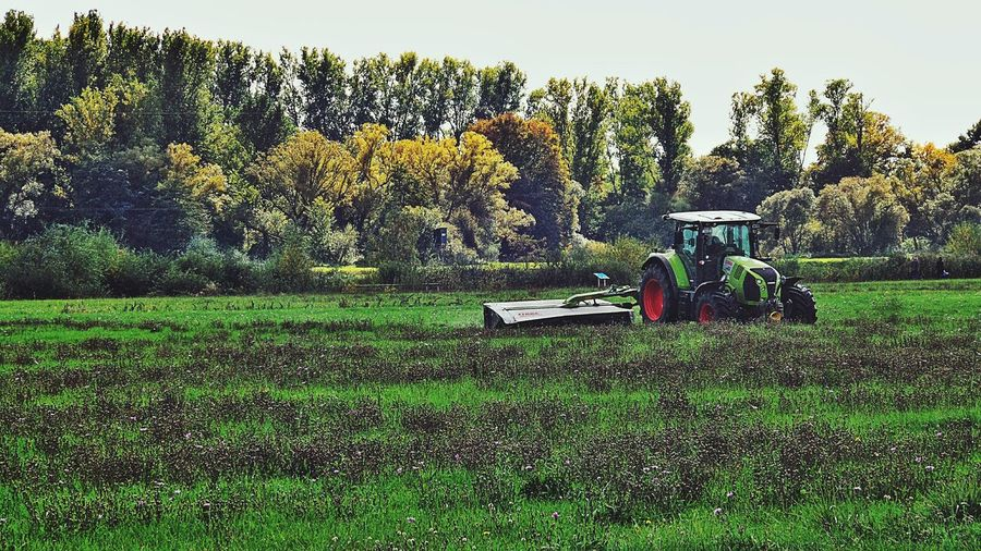 Capture The Moment mowing the meadows to prepare them for the winter time Landscapes Natural Beauty Nature Naturephotography Fall Beauty Last Days Of Summer Die Kinzig-Auen Farm Life Here Belongs To Me