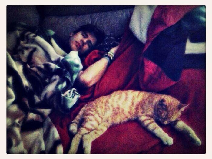 My Cat Sleeping On Me ?