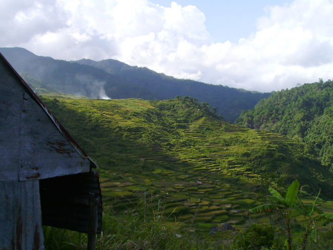 Asian  Banawe Green Mountains Mountain And Sky Mountain Range Mountain Views Philippines Rice Patties Rice Terraces Shanty Perspectives On Nature EyeEm Nature Lover EyeEm Selects