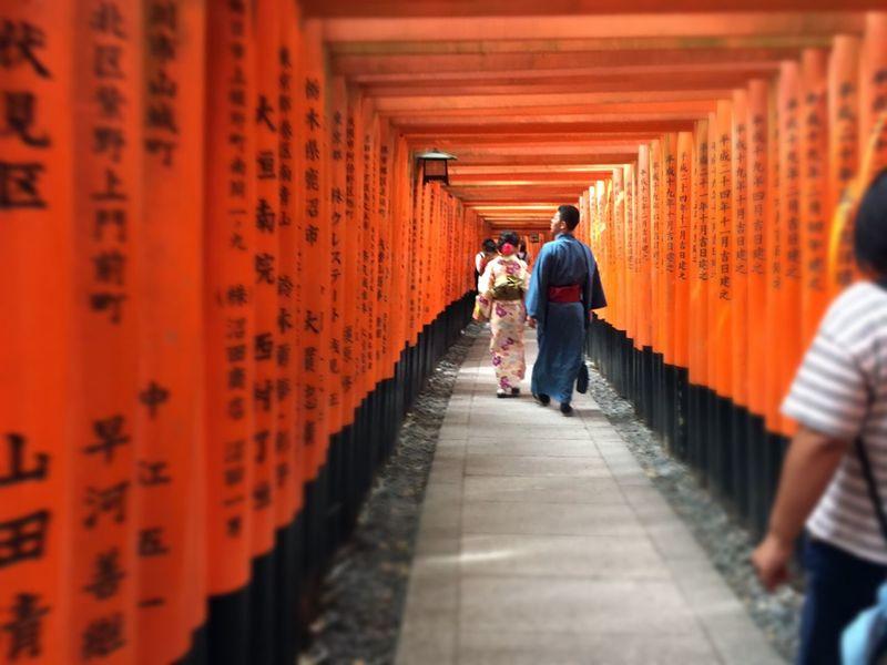 伏見稲荷神社 Shrine Walking Longway People Kyoto Autumn Japanese Shrine