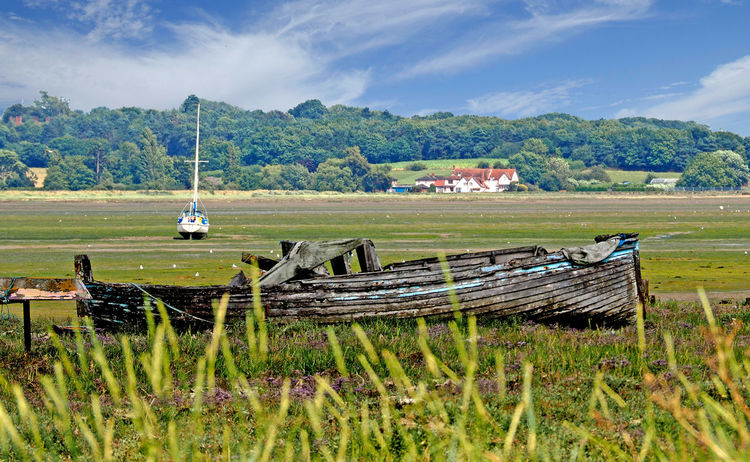 View across the River Stour at low tide - Manningtree, Essex, UK Agriculture Beauty In Nature Cloud - Sky Day Field Grass Growth Landscape Low Tide, Dry River Bed Mammal Mode Of Transport Mountain Nature Nautical Vessel No People Oil Pump Outdoors River Stour Rotten Boat Rural Scene Scenics Sky Transportation Tree Breathing Space Lost In The Landscape