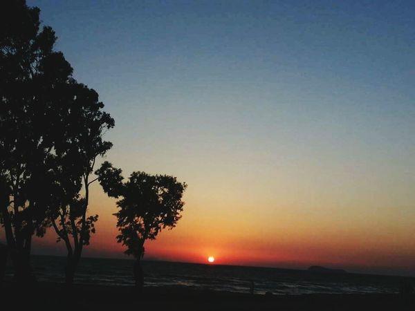 Turgutreis-Turkey Turgutreis at sunset Sea And Sky Seaside Gökyüzü❄⛄🎑 Ağaçlar ♥♡♥ Trees Turgutreis  Nature Sunset_collection Sunset Sun