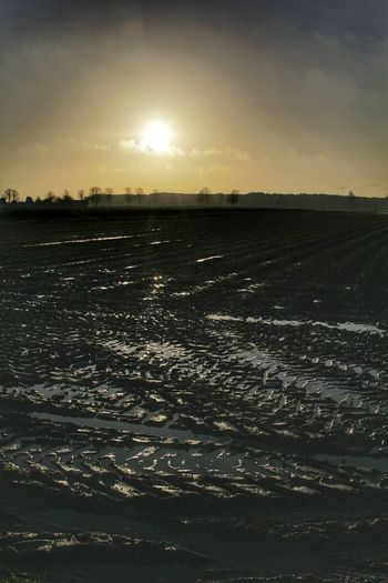 Sunrise North Europe No People Sky Outdoors Scenics Landscape Water Mud Agriculture Tyre Tracks