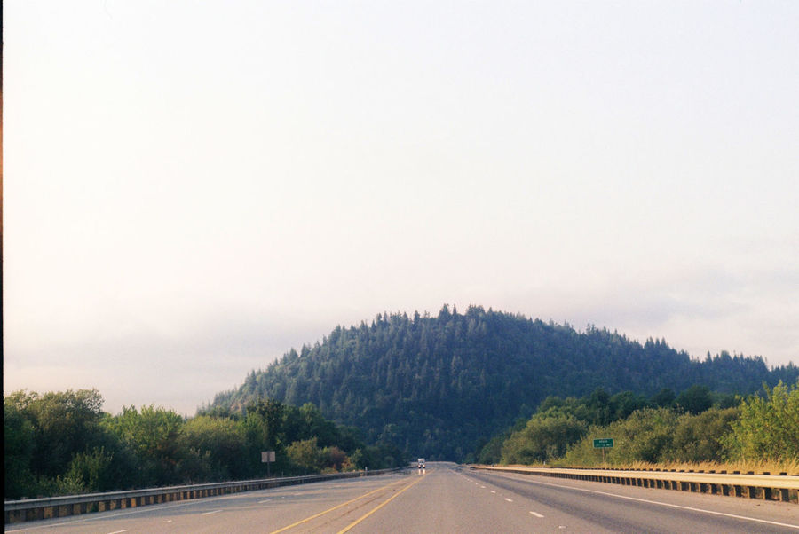 Analog Analogphotography Day Drive Film Film Photography Highway Landscape Landscape_Collection Mountain Nature No People Oregon Outdoors Pacific Northwest  Road Road Trip Roadtrip Sky The Way Forward Transportation Tree