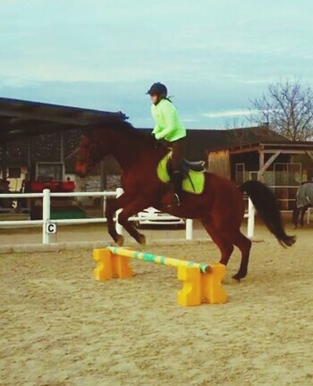 A bissi springa und so Enjoying Life That's Me Horse Jumping Horse Love