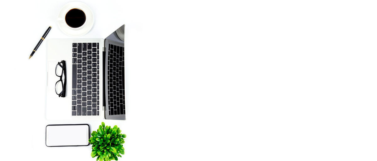 Close-up of laptop on plant against white background